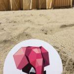 Sur une plage, un Dandy a toujours son emplacement réservé.