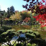 Jardin Japonais - Île de Versailles
